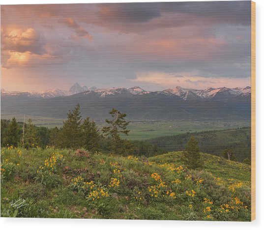 Victor Idaho Sunset Wood Print