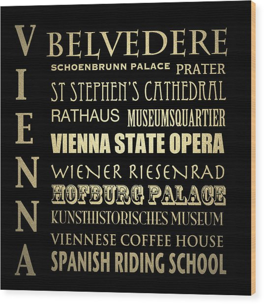 Vienna Austria Famous Landmarks Wood Print