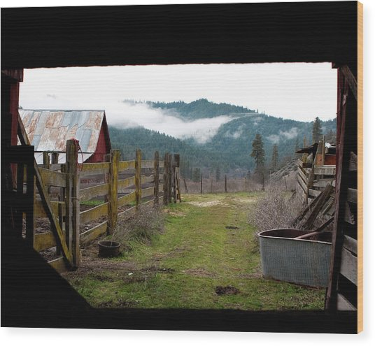 View From A Barn Wood Print