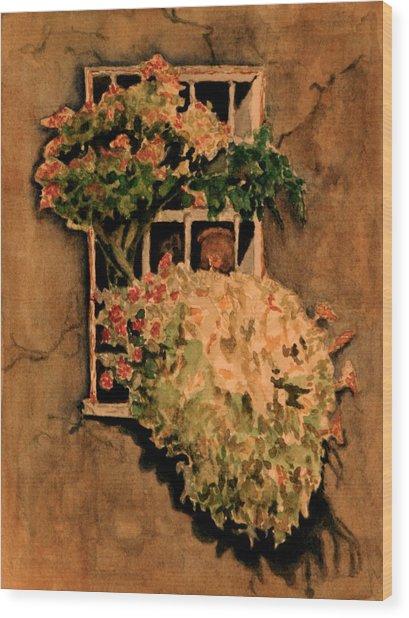 View From A Roman Window Wood Print by Dan Earle