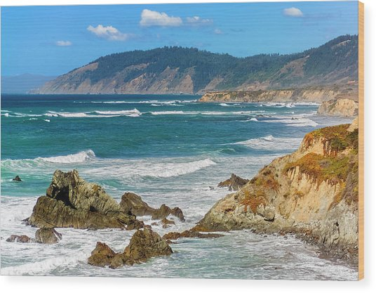 View From Abalone Point Wood Print