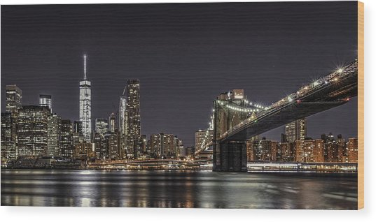 View From Brooklyn Bridge Park Wood Print