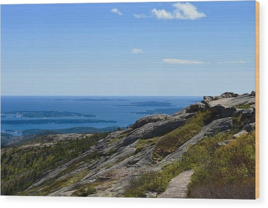 View From Cadillac Mountain Wood Print