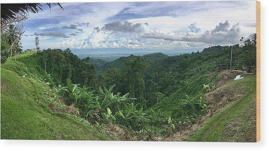 View From Nob Nob Wood Print