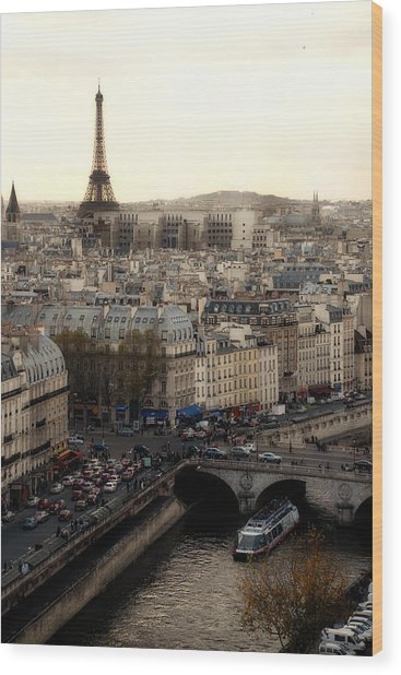 View From Notre Dame Wood Print by Cabral Stock