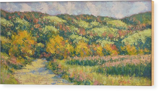 View From Pine Plains Wood Print by Gene Cadore