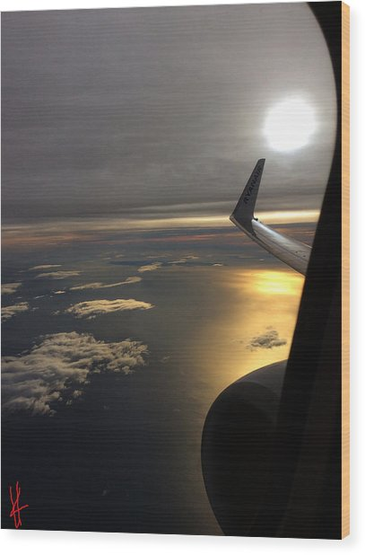 Wood Print featuring the photograph View From Plane  by Colette V Hera Guggenheim