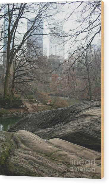 View From Rocks Wood Print