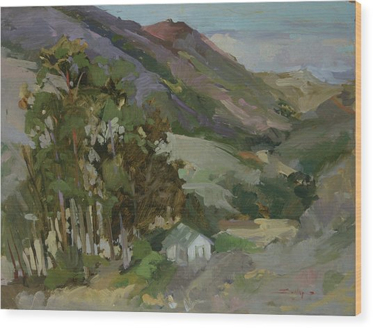 View From The Reservoir - Catalina Island Wood Print