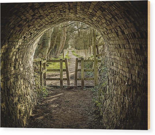 View From The Tunnel Wood Print
