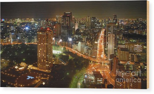 View From Tokyo Tower Wood Print