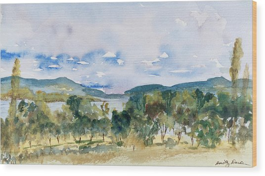 View Of D'entrecasteaux Channel From Birchs Bay, Tasmania Wood Print