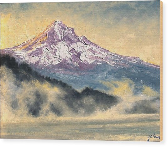 View Of Mt Hood Wood Print by Jim Gola