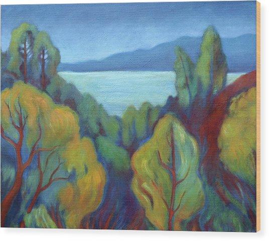 View Of San Francisco Bay Wood Print