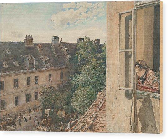 View Of The Alservorstadt Wood Print