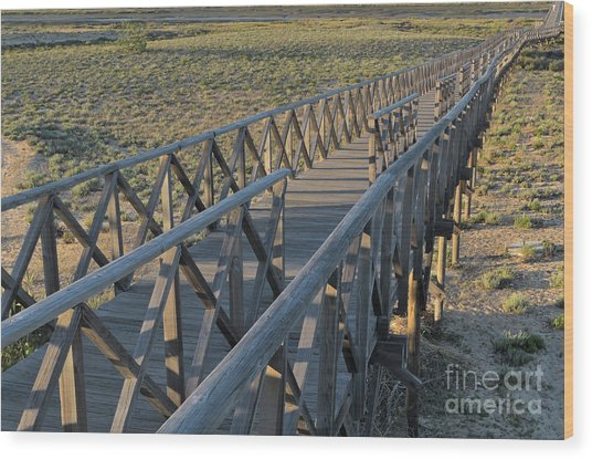 View Of The Wooden Bridge In Quinta Do Lago Wood Print