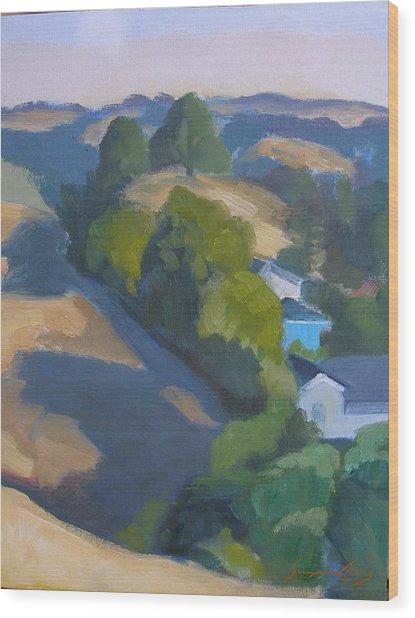 View Of Walnut Creek Hills From Trailhead Wood Print