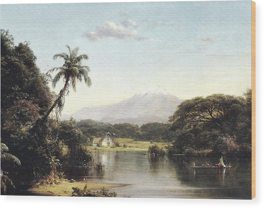 View On The Magdalena River Wood Print