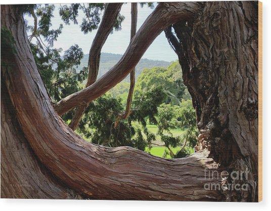 View Through The Tree Wood Print