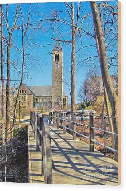 View To Mcgraw Tower Wood Print