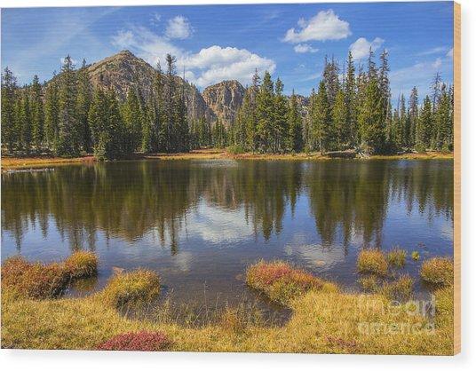 View Towards Notch Mountain Wood Print