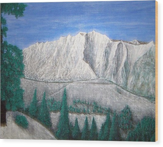 Viewfrom Spruces Wood Print