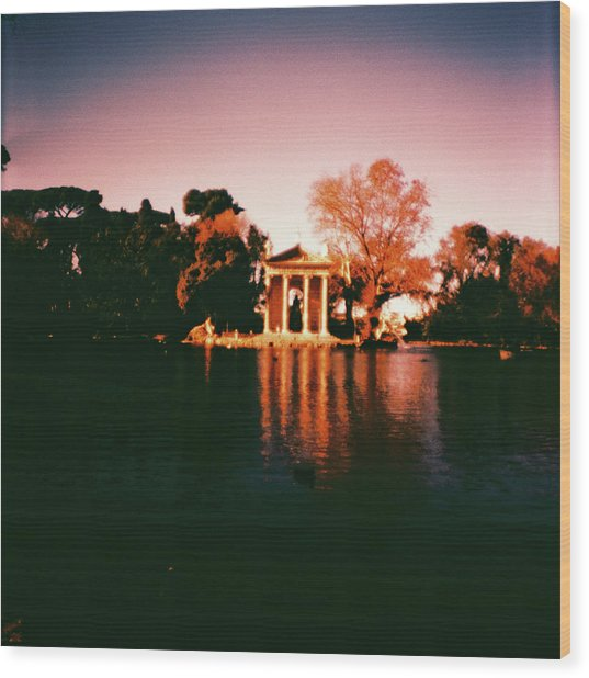 Villa Borghesse Rome Wood Print