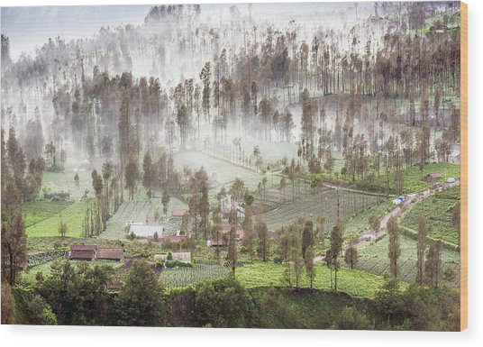 Village Covered With Mist Wood Print