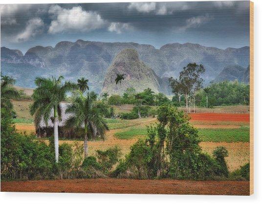 Vinales. Pinar Del Rio. Cuba Wood Print