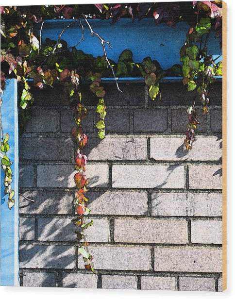 Vines On Blue Wood Print by Gary Everson