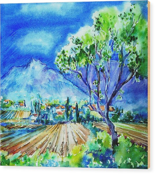 Vineyard Near Opoul In France  Wood Print by Trudi Doyle
