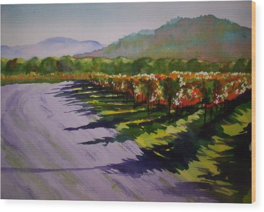Vineyard Shadows Wood Print