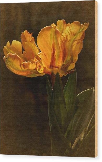 Vintage 2017 Tulip Wood Print