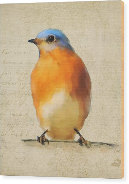 Vintage Bluebird Wood Print