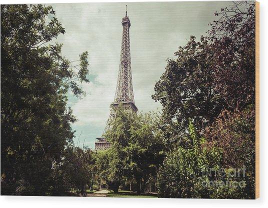 Vintage Paris Landscape Wood Print