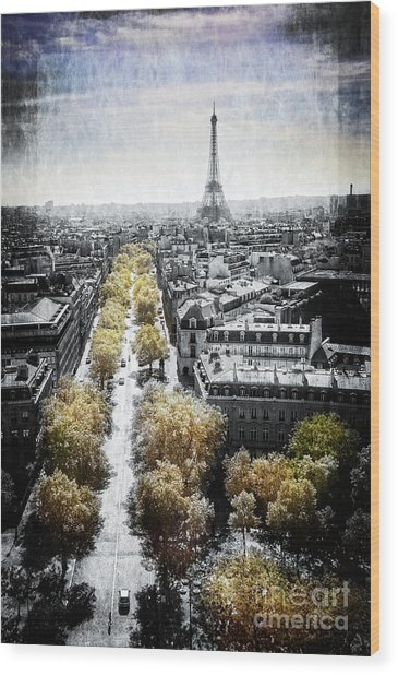 Vintage Paris Wood Print