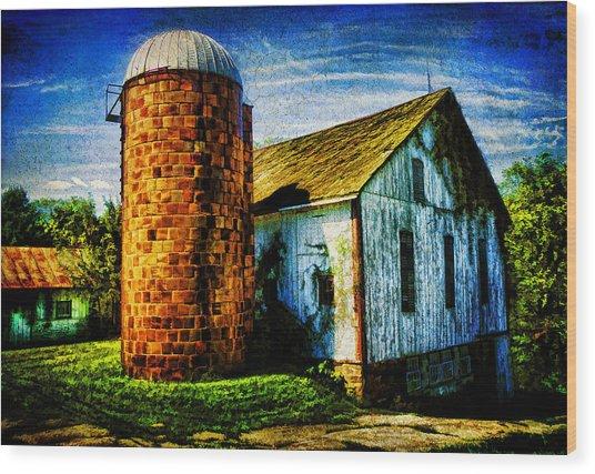 Vintage Silo Wood Print by Trudy Wilkerson