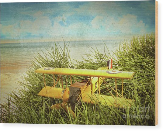 Vintage Toy Plane In Tall Grass At The Beach Wood Print