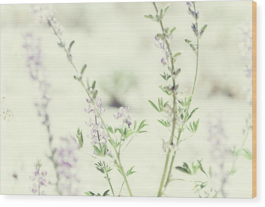 Violet And Green Bloom Wood Print