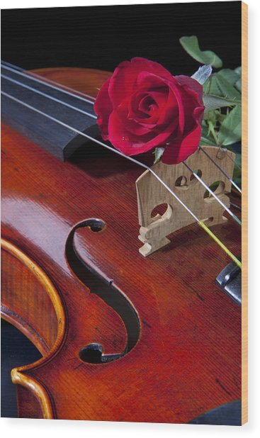 Violin And Red Rose Wood Print