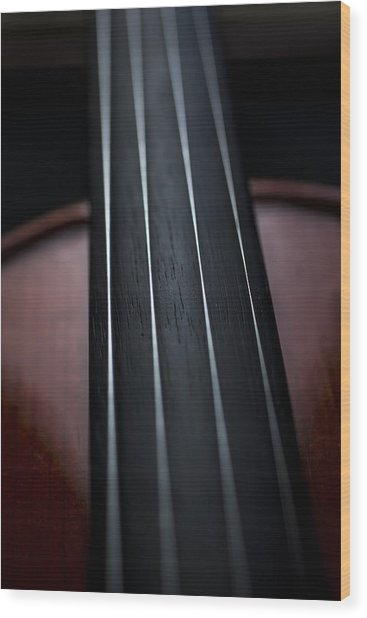 Violin Portrait Music 3 Wood Print