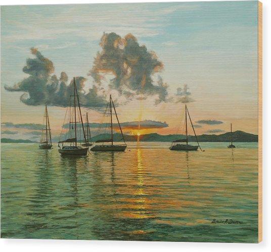 Virgin Islands Wood Print by Bruce Dumas