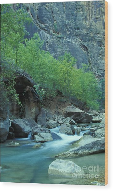 Virgin River In Zion 2 Wood Print by Stan and Anne Foster