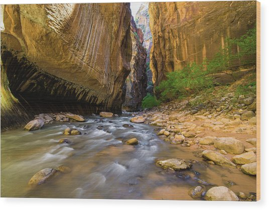 Virgin River - Zion National Park Wood Print