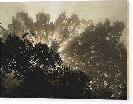 Virginia Sunrise Wood Print