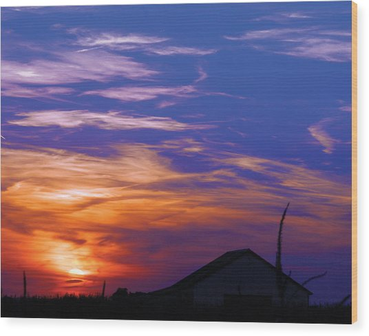 Visionary Sunset Wood Print by Carl Perry