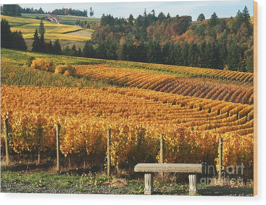 Visiting Wine Country Wood Print