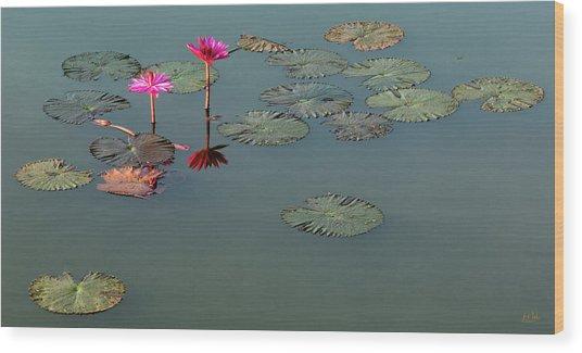 Wood Print featuring the photograph Visual Haiku by Stuart Gordon