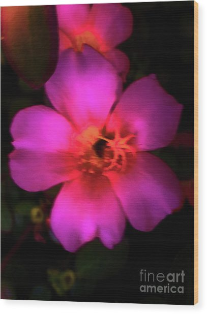 Vivid Rich Pink Flower Wood Print