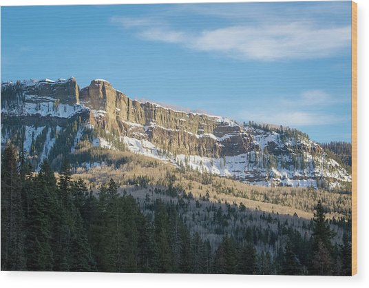 Volcanic Cliffs Of Wolf Creek Pass Wood Print
